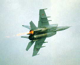 http://www.airforce.ru/content/attachments/37649d1387365089-mig3.jpg