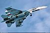 http://www.airforce.ru/content/attachments/64406-stchaikovsky_su-27_01_1200.jpg
