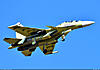 http://www.airforce.ru/content/attachments/66585-a_korshunov_su-30sm_1216_1600.jpg